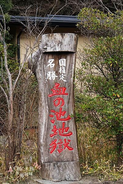 別府-血池地獄 (4).jpg