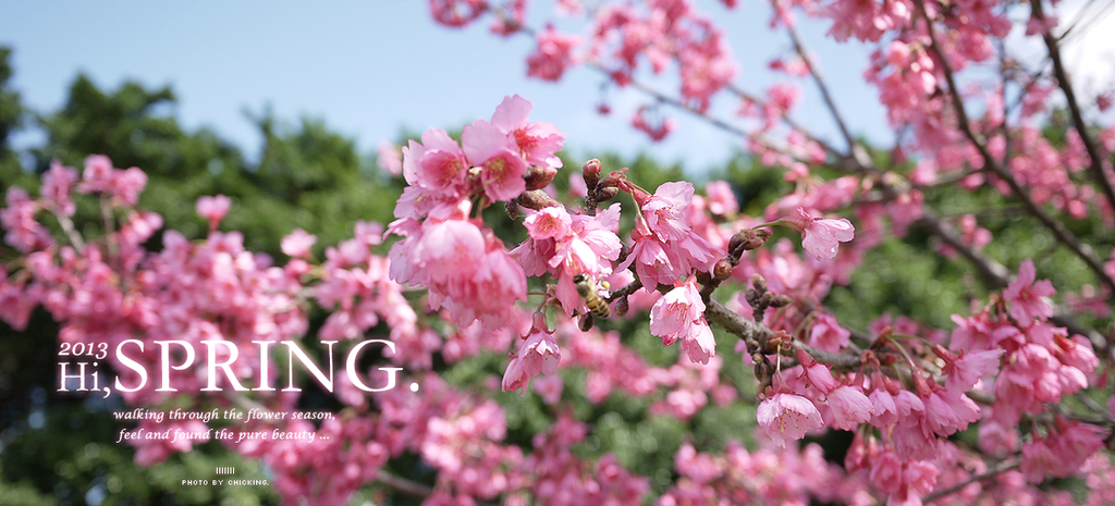 2013早春-橫幅
