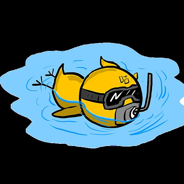 布咕--浮潛