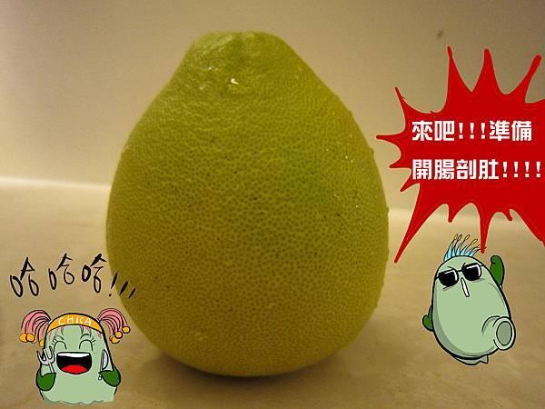 柚子體驗-8
