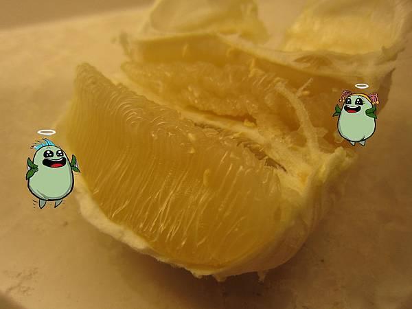 柚子體驗-10