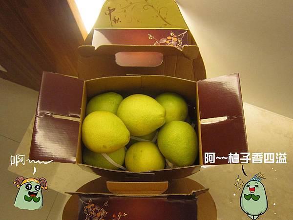 柚子體驗-4
