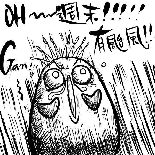 奇可--有颱風!!!
