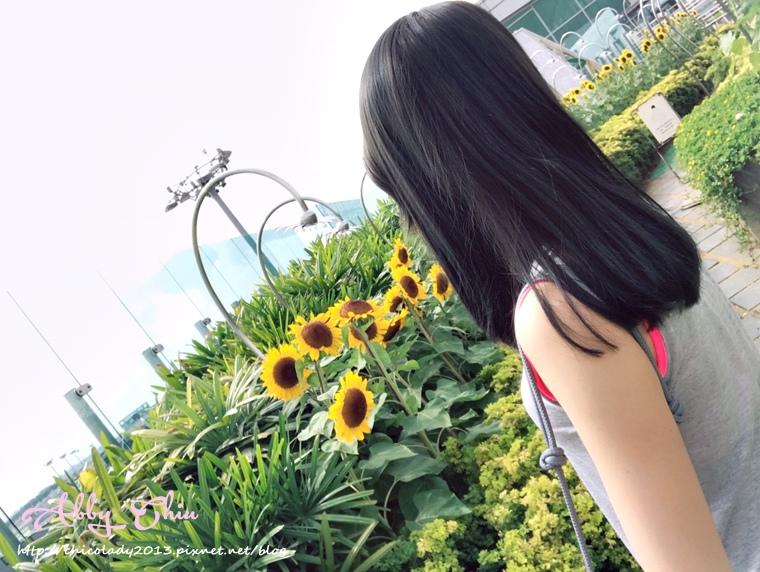 三月髮色_170411_0032.jpg