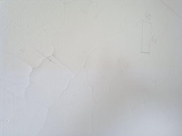 中和歐風機能宅油漆工程篇1.jpg