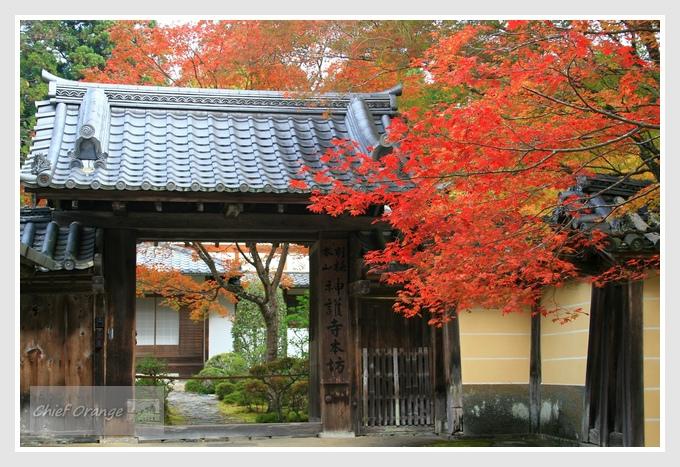 7 高雄山神護寺  (1).JPG