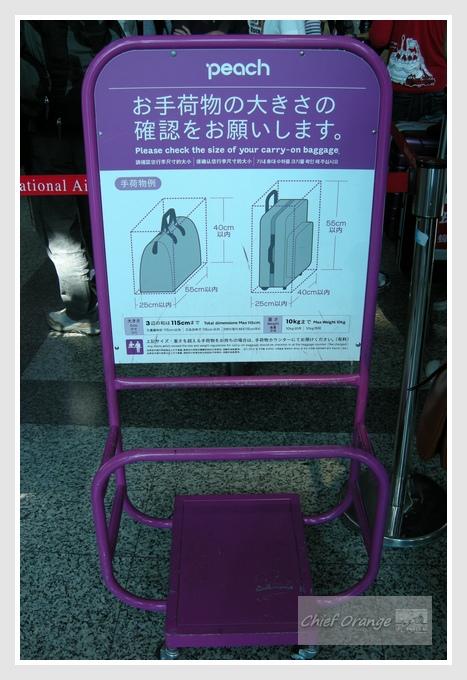 樂桃航空高雄到關西  (3).JPG