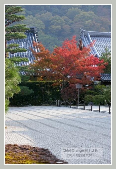 嵐山  (11).JPG