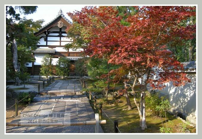 嵐山  (14).JPG