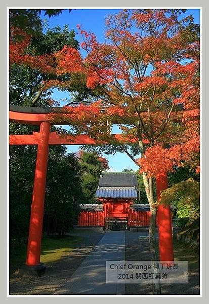 嵐山  (16).JPG