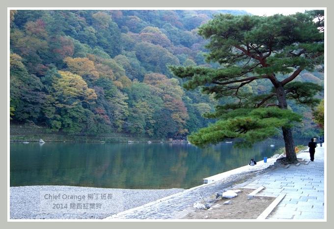 嵐山  (27).JPG