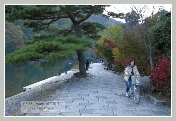 嵐山  (28).JPG