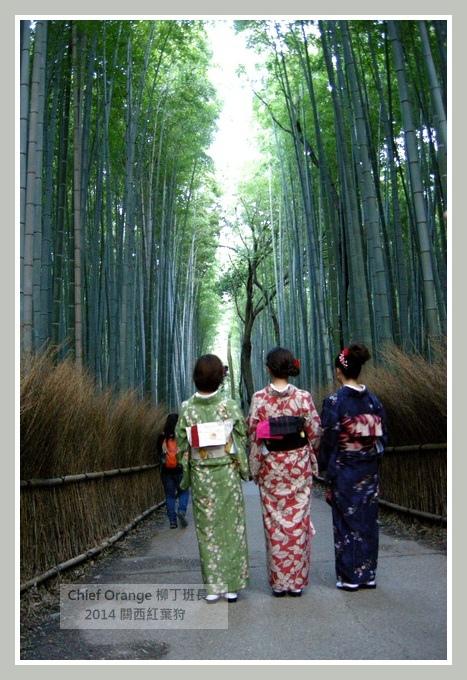 嵐山  (31).JPG