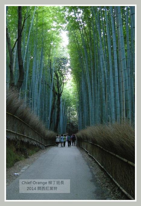 嵐山  (32).JPG