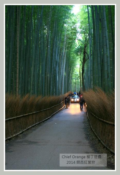 嵐山  (33).JPG