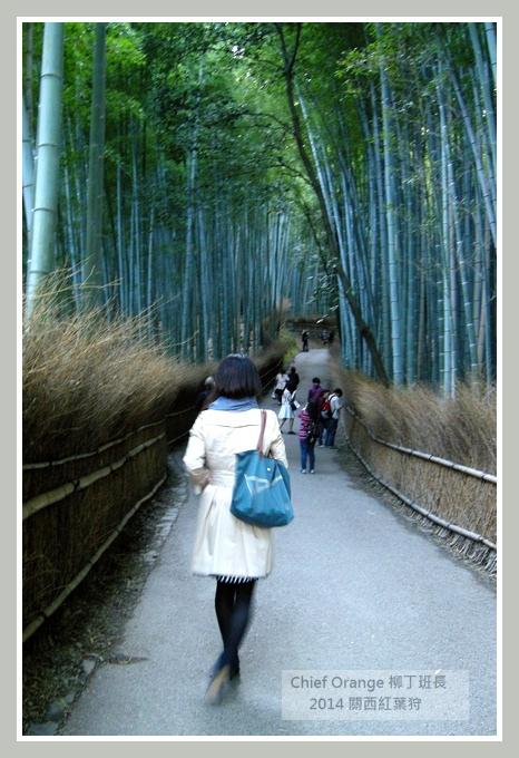 嵐山  (35).JPG