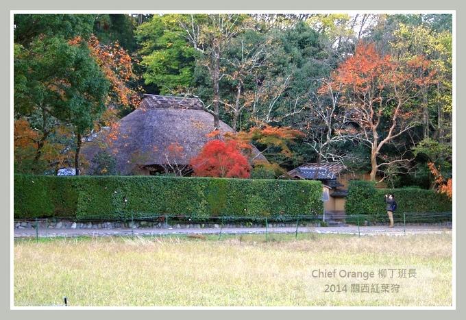 嵐山  (41).JPG