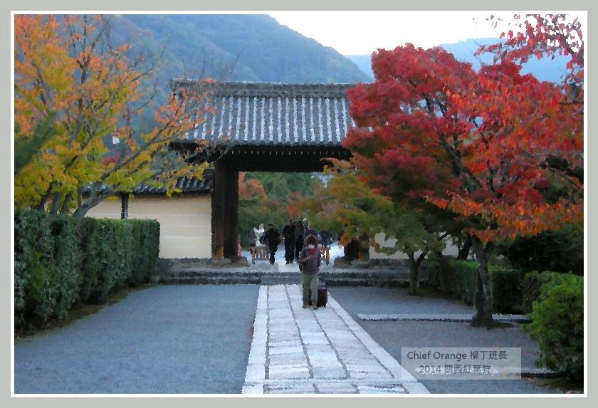 嵐山  (48).JPG