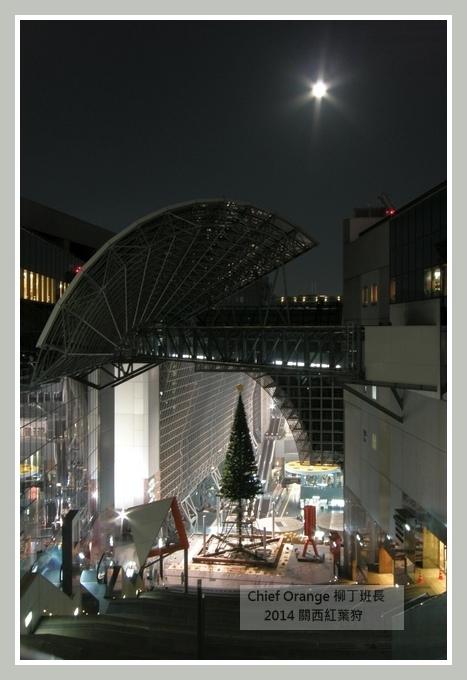 嵐山  (71).JPG