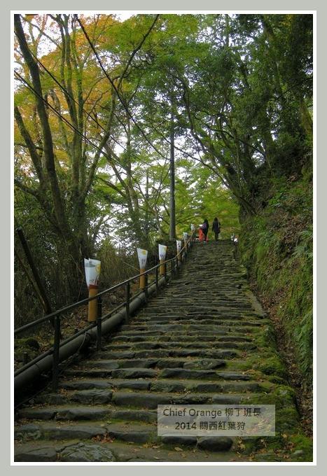 高雄山神護寺  (14).JPG