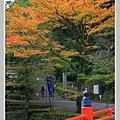 高雄山神護寺  (15).JPG