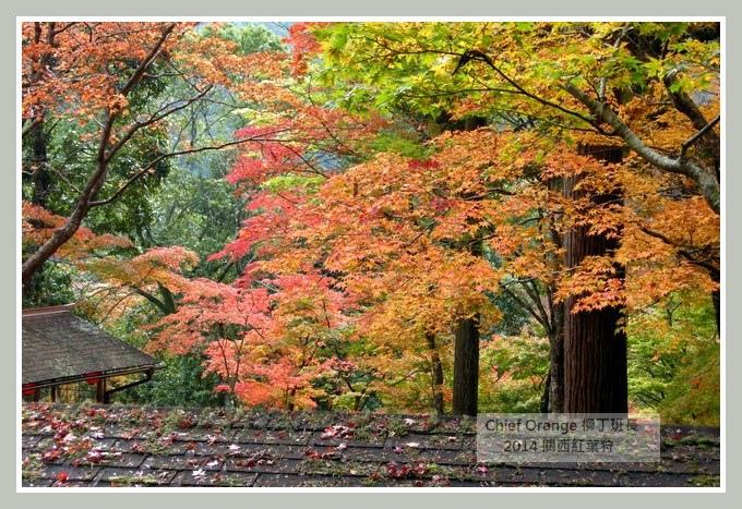 高雄山神護寺  (18).JPG