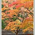 高雄山神護寺  (19).JPG