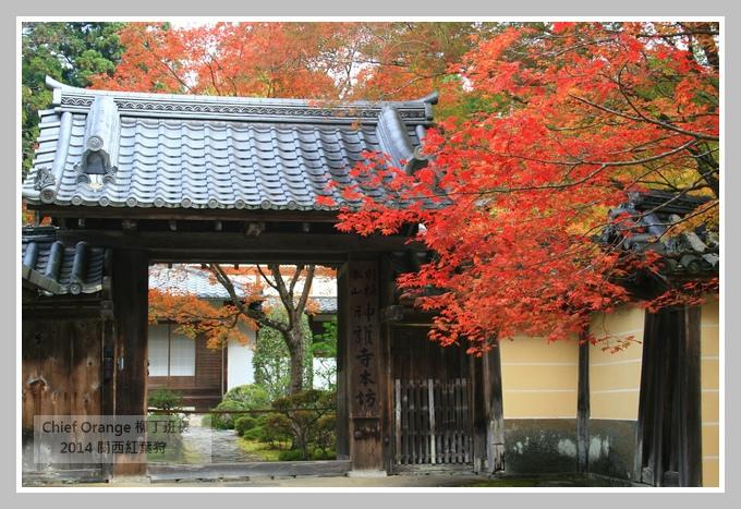 高雄山神護寺  (22).JPG