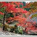 高雄山神護寺  (24).JPG