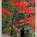 高雄山神護寺  (26).JPG