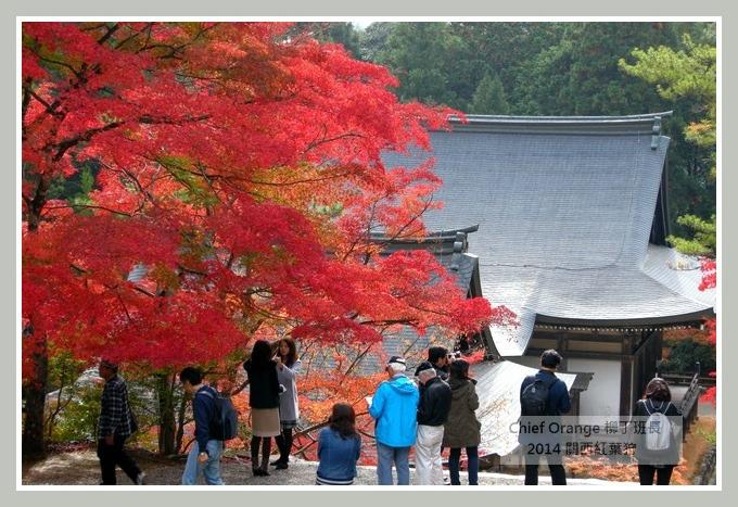 高雄山神護寺  (31).JPG