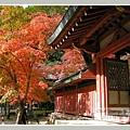 高雄山神護寺  (36).JPG