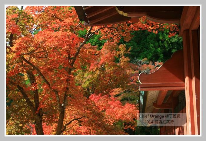 高雄山神護寺  (39).JPG