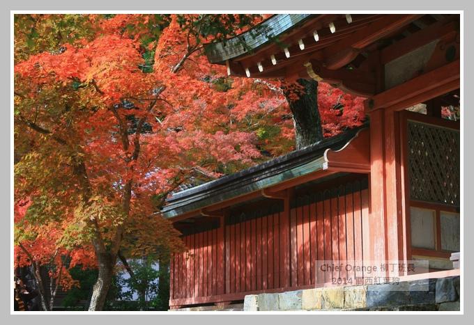 高雄山神護寺  (41).JPG