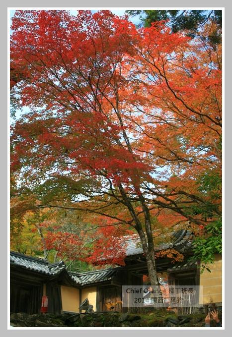 高雄山神護寺  (42).JPG