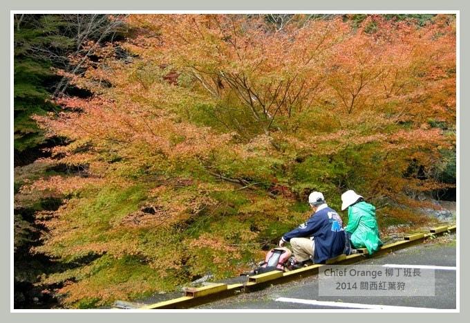 高雄山神護寺  (44).JPG