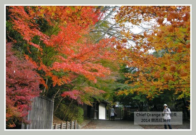 高雄山神護寺  (47).JPG