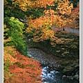 高雄山神護寺  (49).JPG