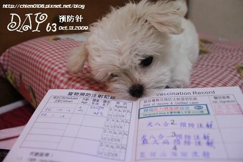 day64_妹妹55.JPG