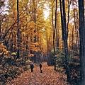 2007-11-11-1744-08_edited.jpg