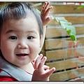 20130504-yetaoyang-22