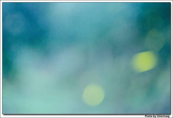 20130504-Firefly-17