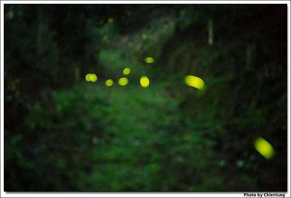20130504-Firefly-18