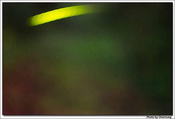 20130504-Firefly-19