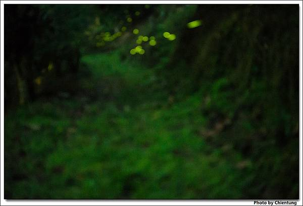20130504-Firefly-20