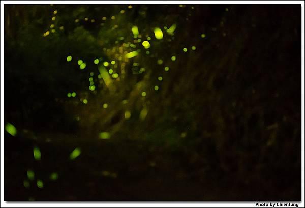 20130504-Firefly-27