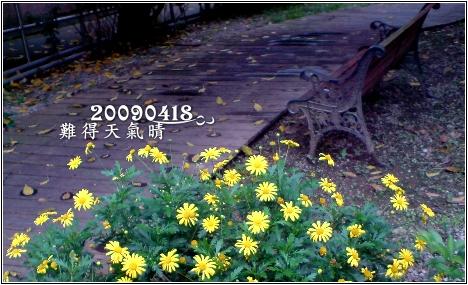 980418.jpg