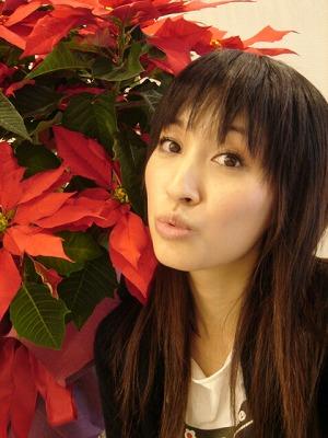 千繪と聖誕紅 ver.2