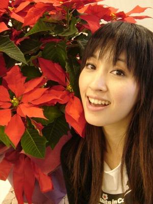 千繪と聖誕紅 ver.3