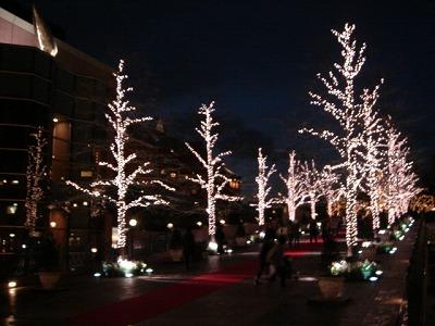 燈飾...很美~